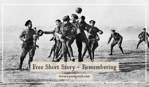 In this free short story, my fictional war photographer Faraday James reminisces on the War to End All Wars, and whether it was truly worth it.