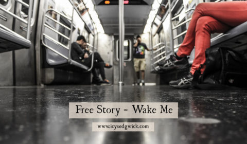 In this free short story, strange events unfold on the subway as the train reaches the end of the line...