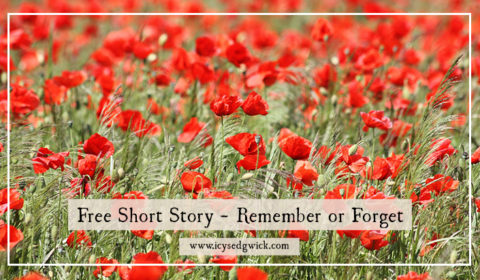 This free short story explores the memory of a First World War soldier in honour of Remembrance Sunday.
