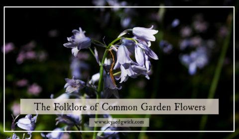 Common Garden Flowers: Folklore of Bluebells, Daffodils & Hydrangeas