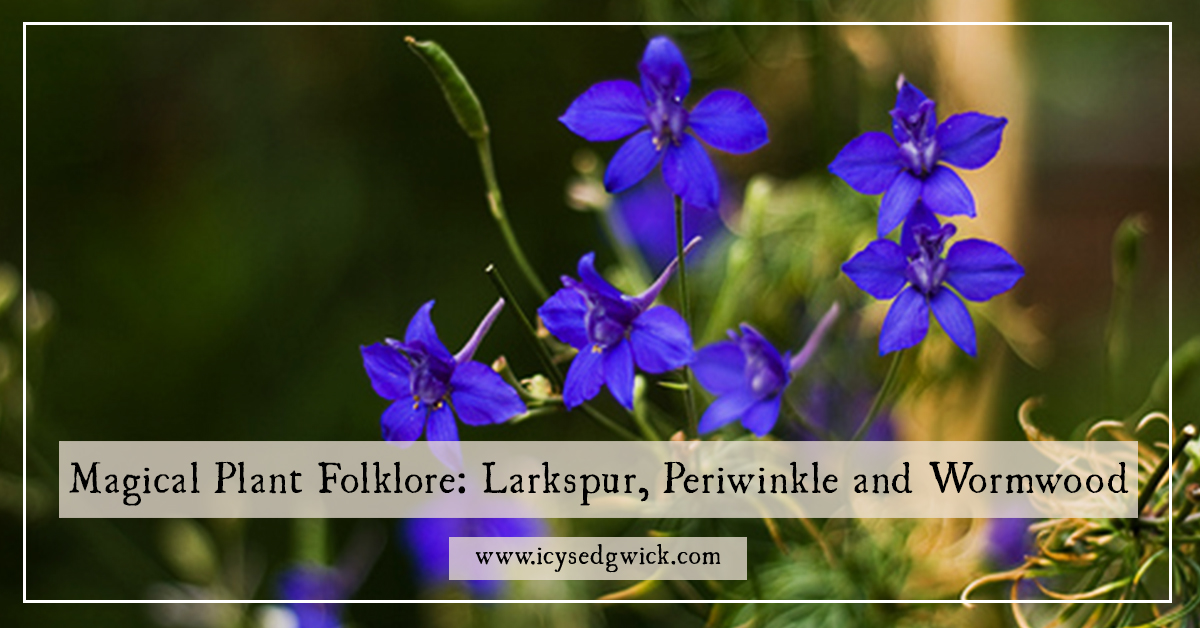 Magical Plant Folklore: Larkspur, Oleander and Wormwood