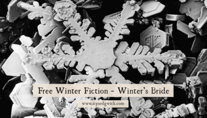 Free Winter Fiction – Winter's Bride