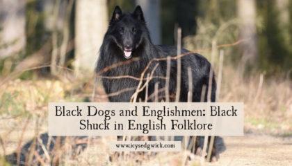 Black Dogs and Englishmen: Black Shuck in English Folklore