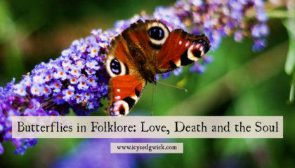 Butterflies aren't just a harbinger of summer. They also bring romance - and death. Click here to learn more about their symbolism and superstitions.
