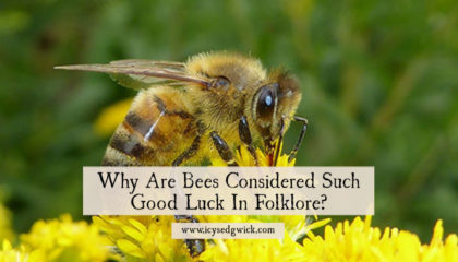 Bees hold an important place in folklore, representing a range of positive associations. But why are they considered symbols of good luck? Find out here.