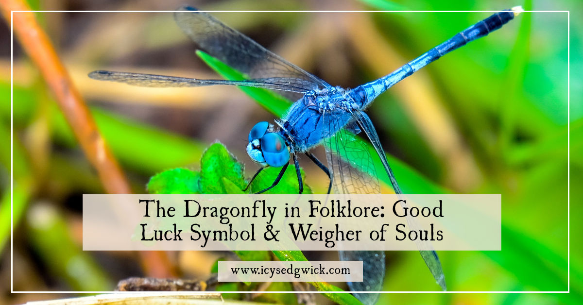 The Dragonfly In Folklore Good Luck Symbol Weigher Of Souls