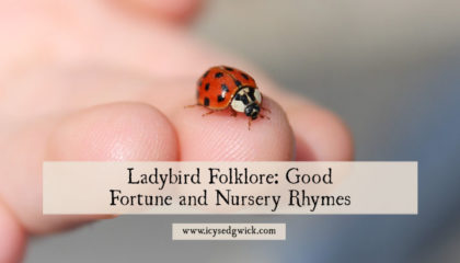 Symbol of good luck and modern-day pest control, the ladybird appears throughout the folklore of many cultures. Click here to learn more of its legends.